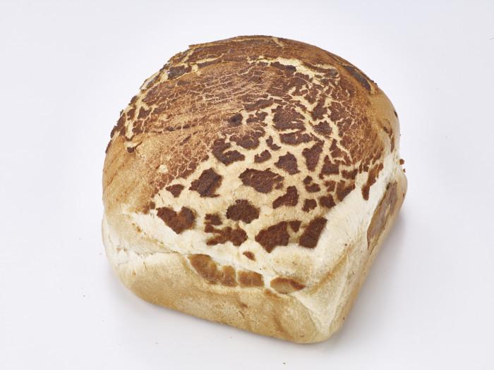 Groot Wit Tijger Vierkant - Bakeronline